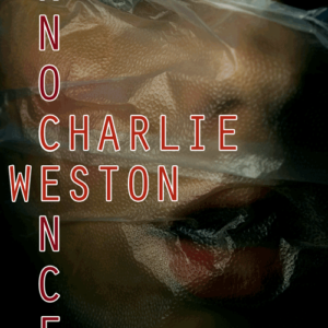 FIC006 - Fiction Pre-made book cover