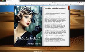 Book Branders Screen-Shot-2018-05-04-at-3.12.53-PM-300x182 Portfolio